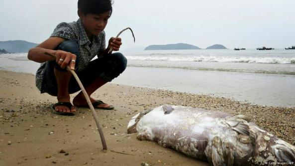 Báo chí quốc tế cũng đã lên tiếng về thảm họa môi trường ở Việt Nam.